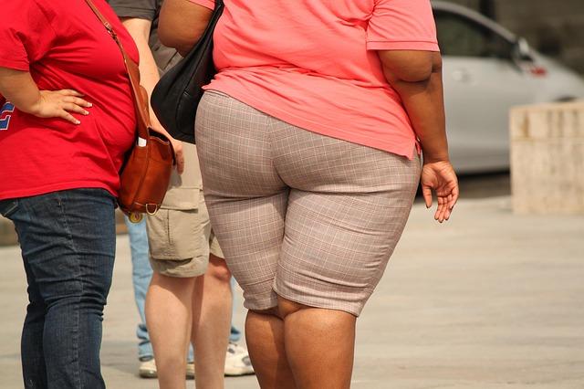 Como a obesidade se relaciona com o tipo de alimento que ingerimos? 1