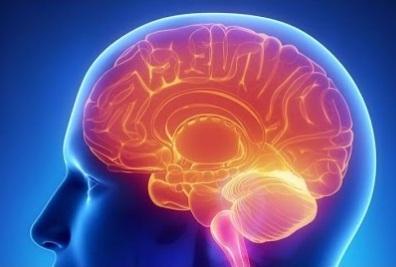 14 remédios caseiros para melhorar a memória (natural) 1
