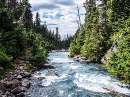 A água é a mesma nos oceanos, rios e lagos? 2