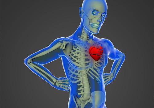 Choque distributivo: sintomas, causas, tratamentos 1