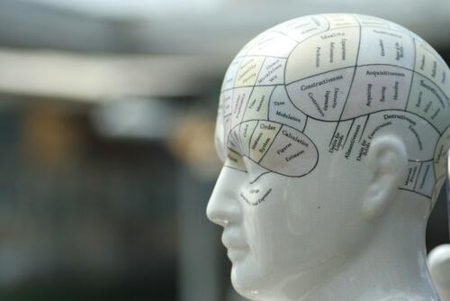 Psicologia diferencial: história, princípios e objeto de estudo 2