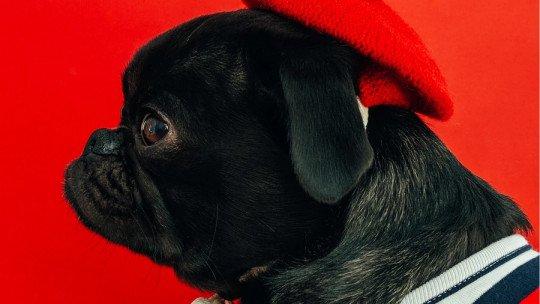 O que significa a cor vermelha em Psicologia? 1