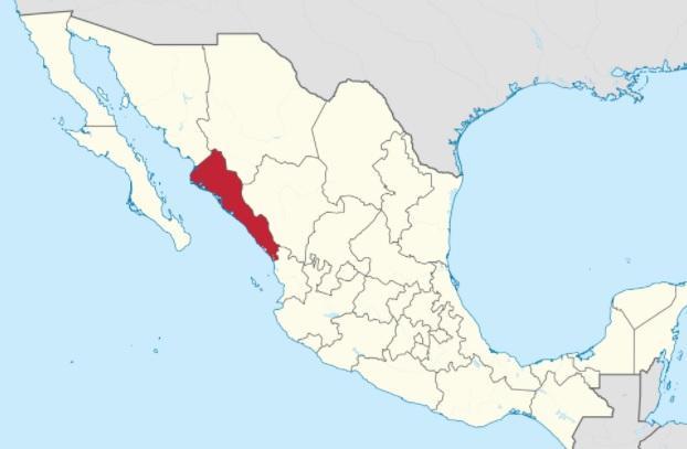 As atividades econômicas mais importantes de Sinaloa 1