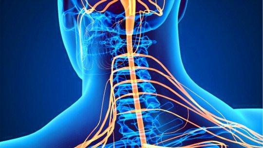 Síndrome de Brown Sequard: causas, sintomas e tratamento 1