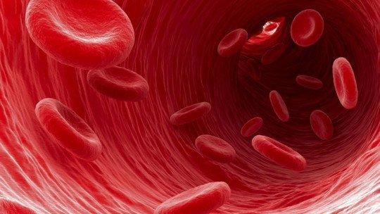 Síndromes mieloproliferativas: tipos e causas 1