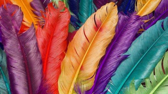 Sinestesia, pessoas com capacidade de ver sons e provar cores 1
