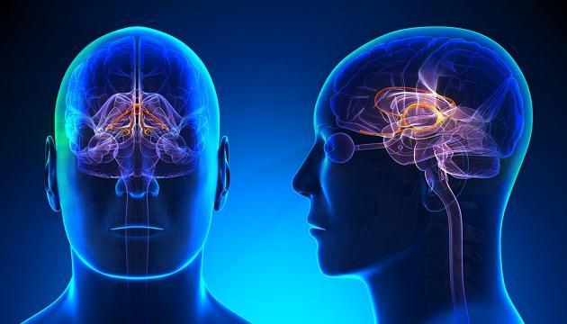 Enjoo (tontura): sintomas, causas e tratamentos 9