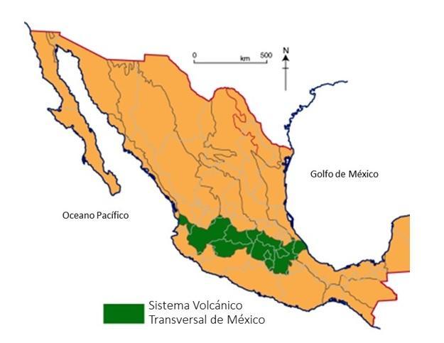Sistema Vulcânico Transversal do México: Características 1