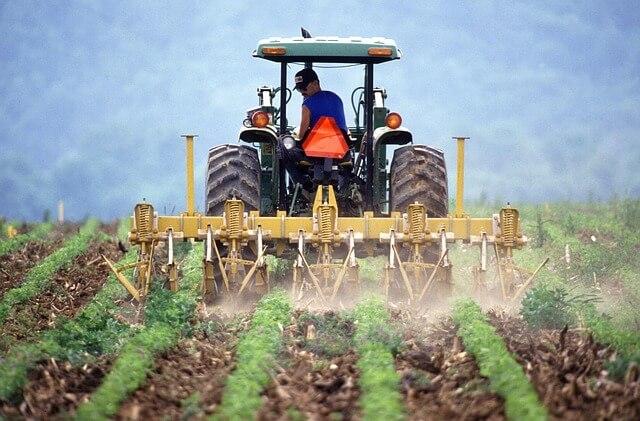 Paisagem agrícola: características, exemplos, diferenças com a paisagem urbana 1
