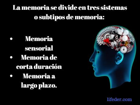 O que é a memória humana? (Psicologia) 4