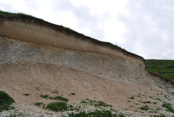 Solo calcário: características, composição, formação, estrutura 1