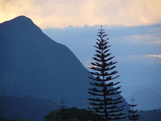 Alívio de Antioquia: características mais relevantes 3