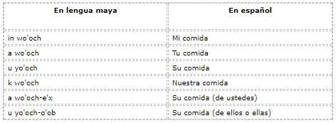 Quais são os pronomes em maia? (Com exemplos) 6