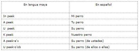 Quais são os pronomes em maia? (Com exemplos) 7