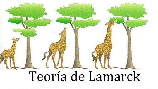 A teoria de Lamarck e a evolução das espécies 1