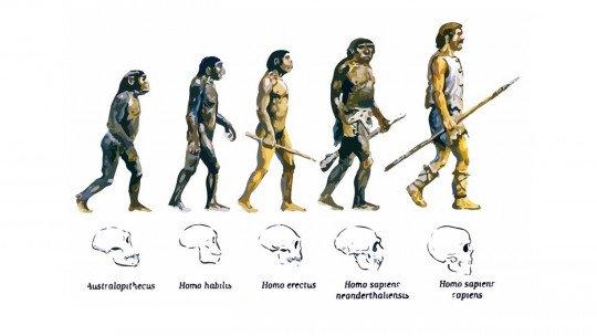 A teoria da evolução biológica 1