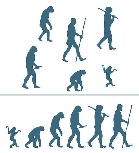 Ideias que confrontam o pensamento teológico com a teoria da evolução 1