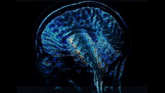 Terapias Neurocientíficas: uma revolução na psicoterapia 1