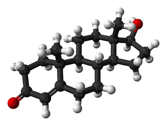 Os 6 hormônios do estresse e seus efeitos nos seres humanos 8