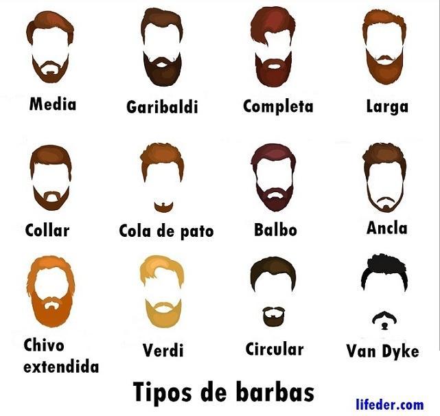 20 tipos de barbas juvenis e adultas (com fotos) 1