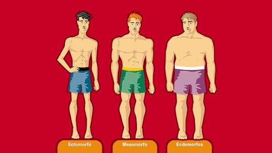 Os 7 tipos de corpo (ou somatotipos): o que são? 1