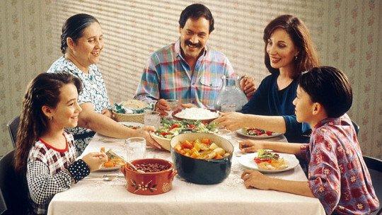 Os 8 tipos de famílias (e suas características) 1