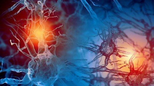 Tipos de hormônios e suas funções no corpo humano 1