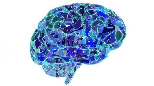 Tipos de memória: como as memórias armazenam o cérebro humano? 1