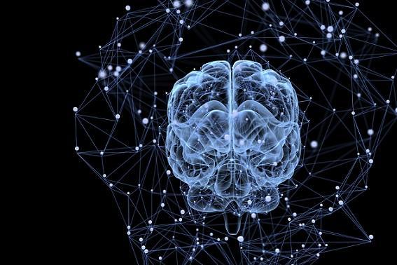 Tipos de memória e suas características (Psicologia) 1