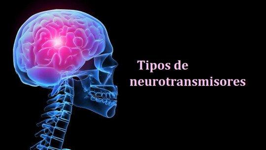 Tipos de neurotransmissores: funções e classificação 1