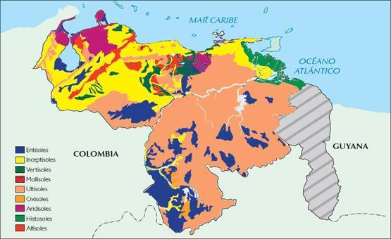 Os 9 tipos de solos na Venezuela 5