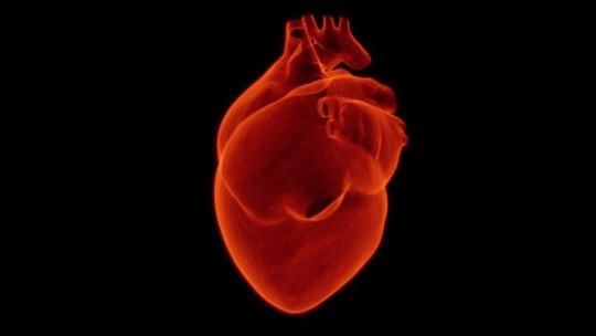 Tipos de taquicardia: possíveis sintomas e causas 1