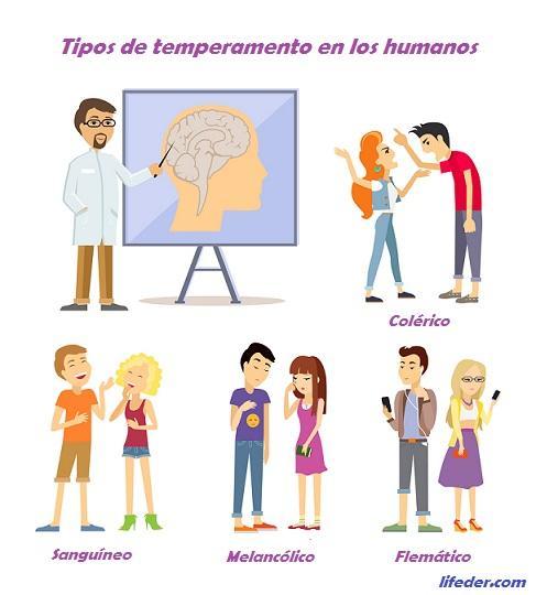 Tipos de temperamento e características humanas 1
