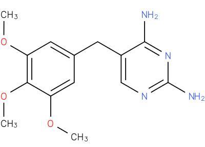 Trimetoprim: características, mecanismo de ação e usos 1