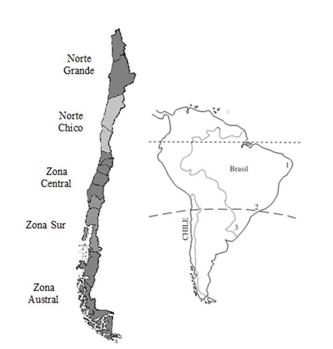 9 Vantagens comparativas do Chile em relação a outros países 3