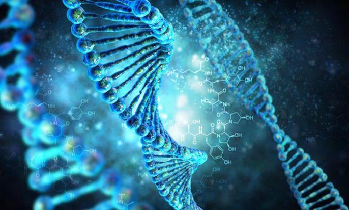 O que é o gene dominante e o gene recessivo? 1