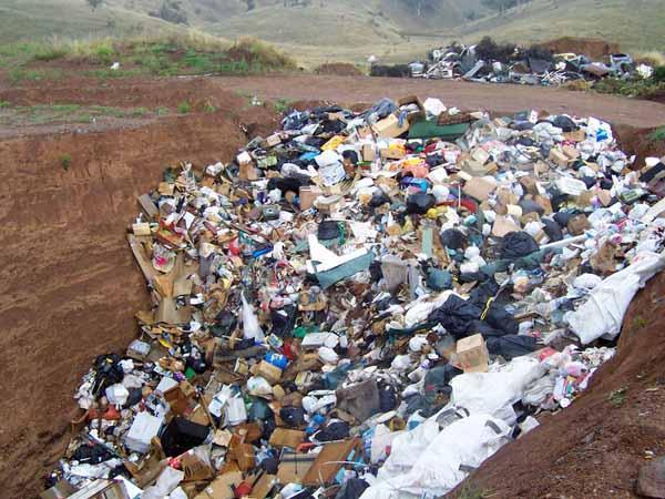 Poluição do lixo: causas, consequências e exemplos 3