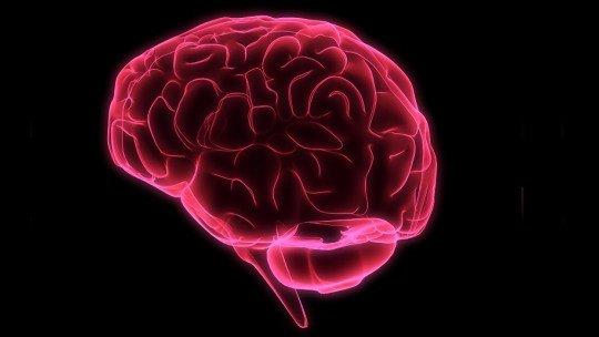 As 9 vias dopaminérgicas do cérebro: tipos, funções e distúrbios associados 1