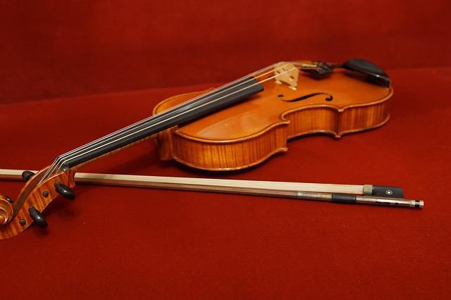 Instrumentos de corda e suas partes 3