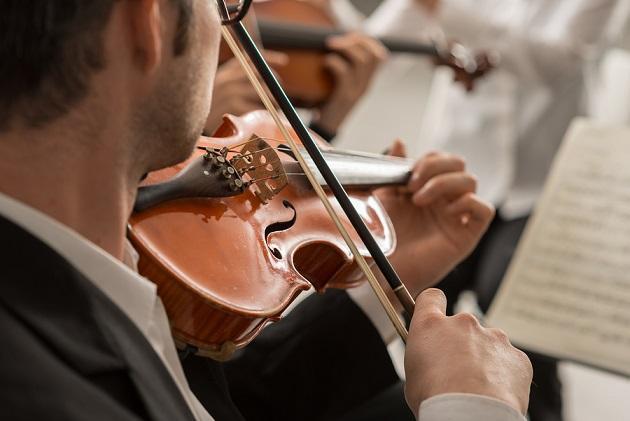 Instrumentos de corda e suas partes 2