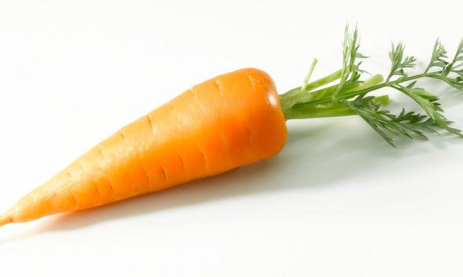 30 plantas alimentares e seus benefícios para a saúde 10
