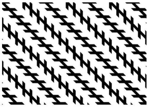50 ilusões ópticas surpreendentes para crianças e adultos 13