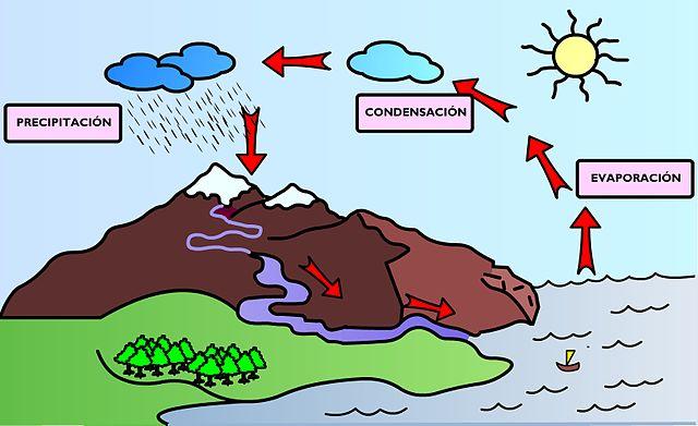 Ciclo do hidrogênio: fases e importância