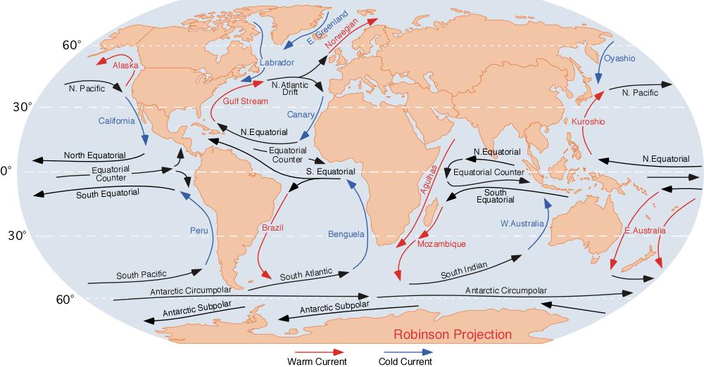 Correntes marinhas: como ocorrem, tipos, consequências, importância