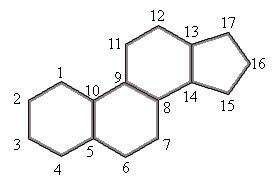 Esteróides características, estrutura, funções, classificação