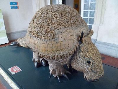Glyptodon: características, habitat, alimentação, reprodução 10