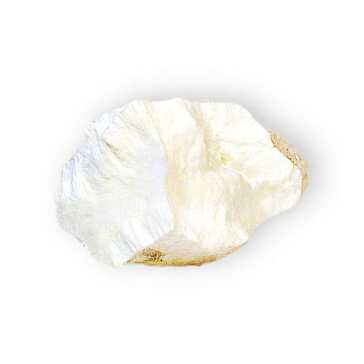 Silicato de cálcio: propriedades, estrutura, produção, usos 3