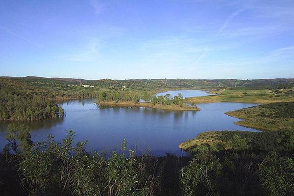 Pântano: características, tipos, flora, fauna, exemplos