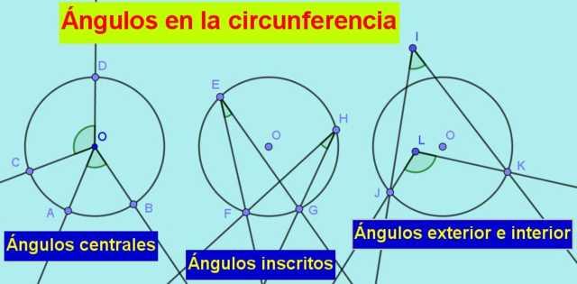 Ângulos na circunferência: tipos, propriedades, exercícios resolvidos