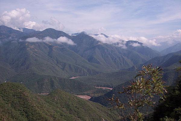 Ecossistema montanhoso: características, flora, fauna, exemplos 4